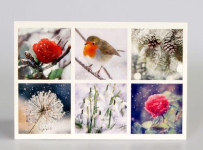 Winter Montage