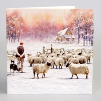 Snowy Sheep Christmas Cards